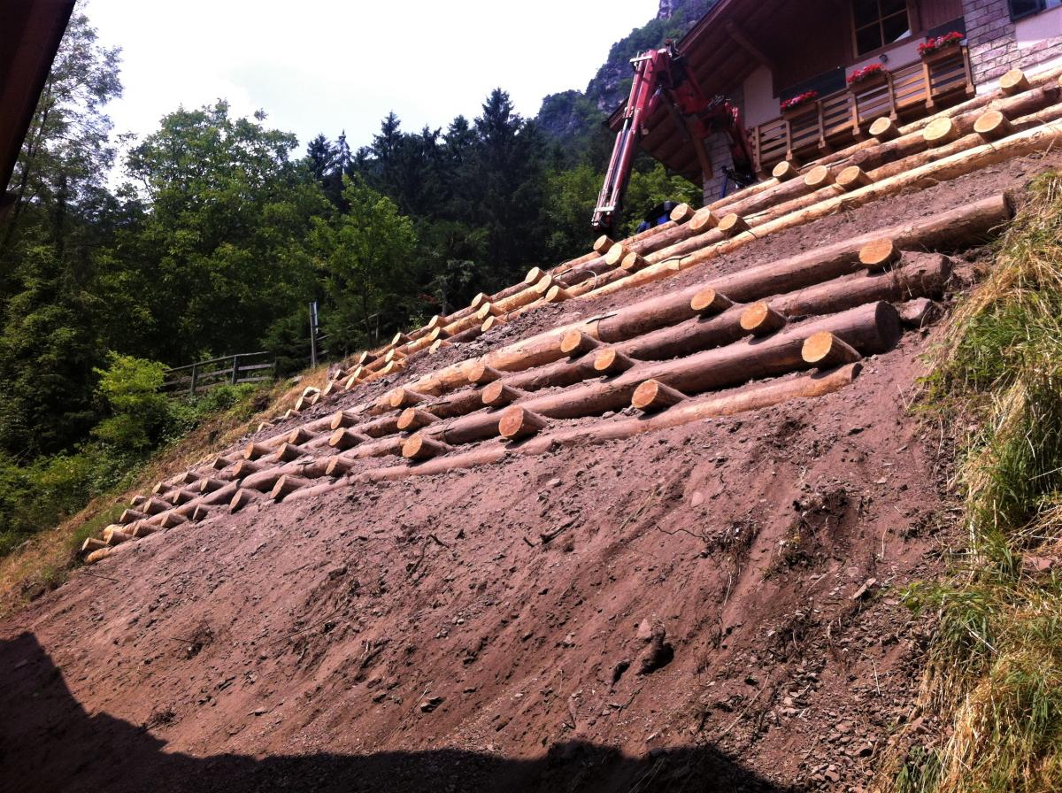 Wooden Slope Stabilisation Structure, Preore